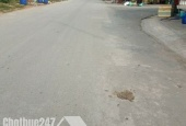 Bán 250 m2 đất tại đường Trần Văn Giàu, huyện Bình Chánh, thành phố Hồ Chí Minh