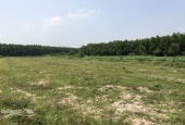 Cần bán 10000m2 đất, 2 mặt tiền đường Phạm Thái Bường, cách vành đai 3 là 100m