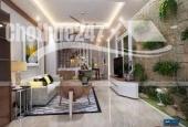 Biệt thự bự chảng, DT 262,5 m2, Hương lộ 11, Bình Chánh.