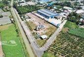 Đất nền Củ Chi SHR, cách nước mía Vườn Cau 500m, pháp lý đầy đủ chỉ từ 600 triệu.