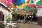 Cần sang quán cafe trà sữa ở khu phố 2, P. Tân Định, TX Bến Cát, Bình Dương