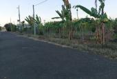 Bán 1505m2 đất chính chủ Đường Số 92, Xã Long Phước, TP. Bà Rịa