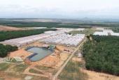 đất nền Bình Thuận, 65tr/1000m2, mua bán công chứng, Sông Lũy Bắc Bình