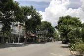 Cho thuê biệt thự phố vườn - mặt tiền đường N - Khu phố Mỹ Giang , PMH