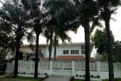 Chuyên cho thuê biệt thự khu vực Phú Mỹ Hưng, Quận 7, giá rẻ nhất