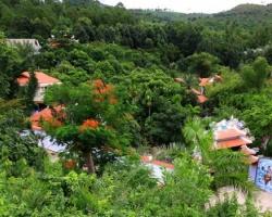 Đà Nẵng tự giải quyết vụ biệt thự trên núi Hải Vân