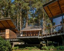 Ngắm nhìn ngôi nhà nghỉ độc đáo trong rừng