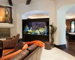 Những vị trí tuyệt vời để đặt bể cá trong nhà